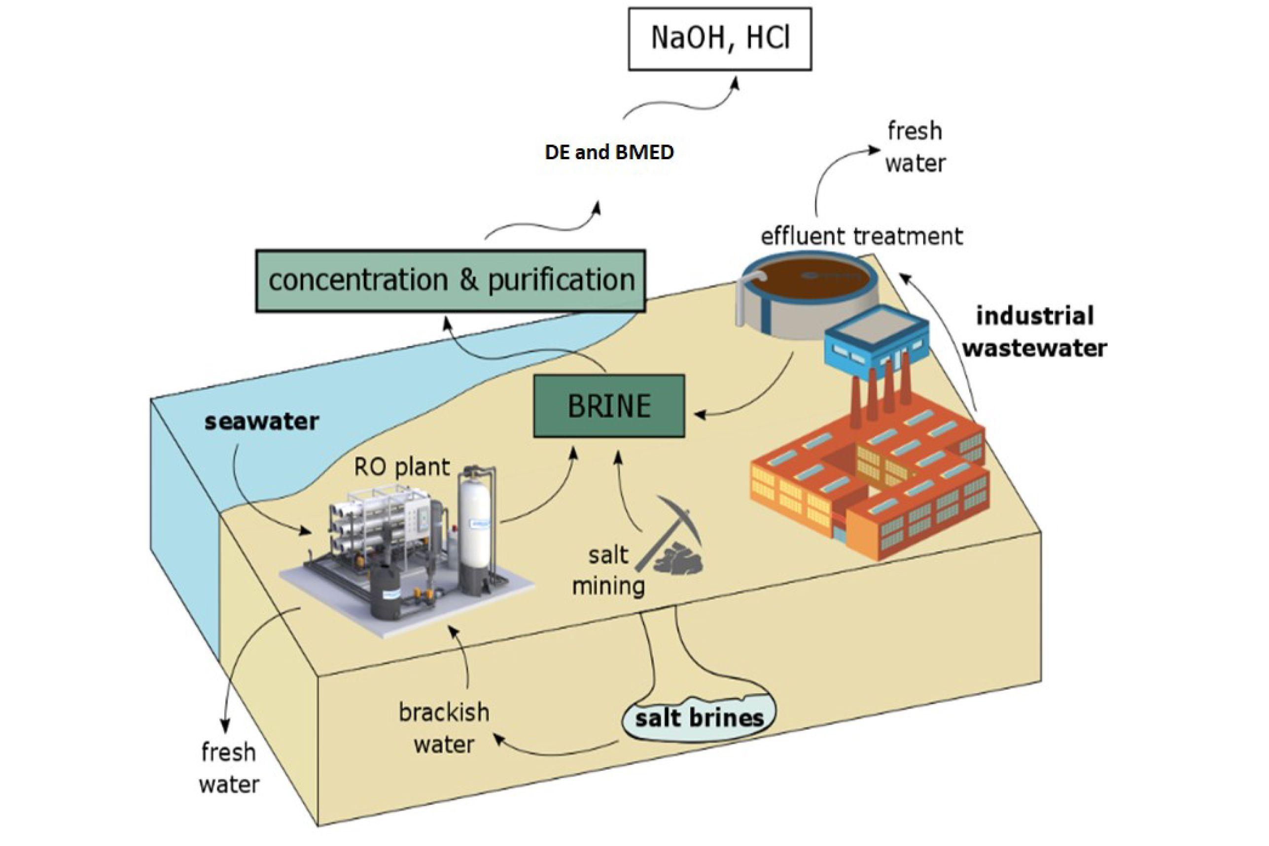 Desalination business plan resume critique worksheet