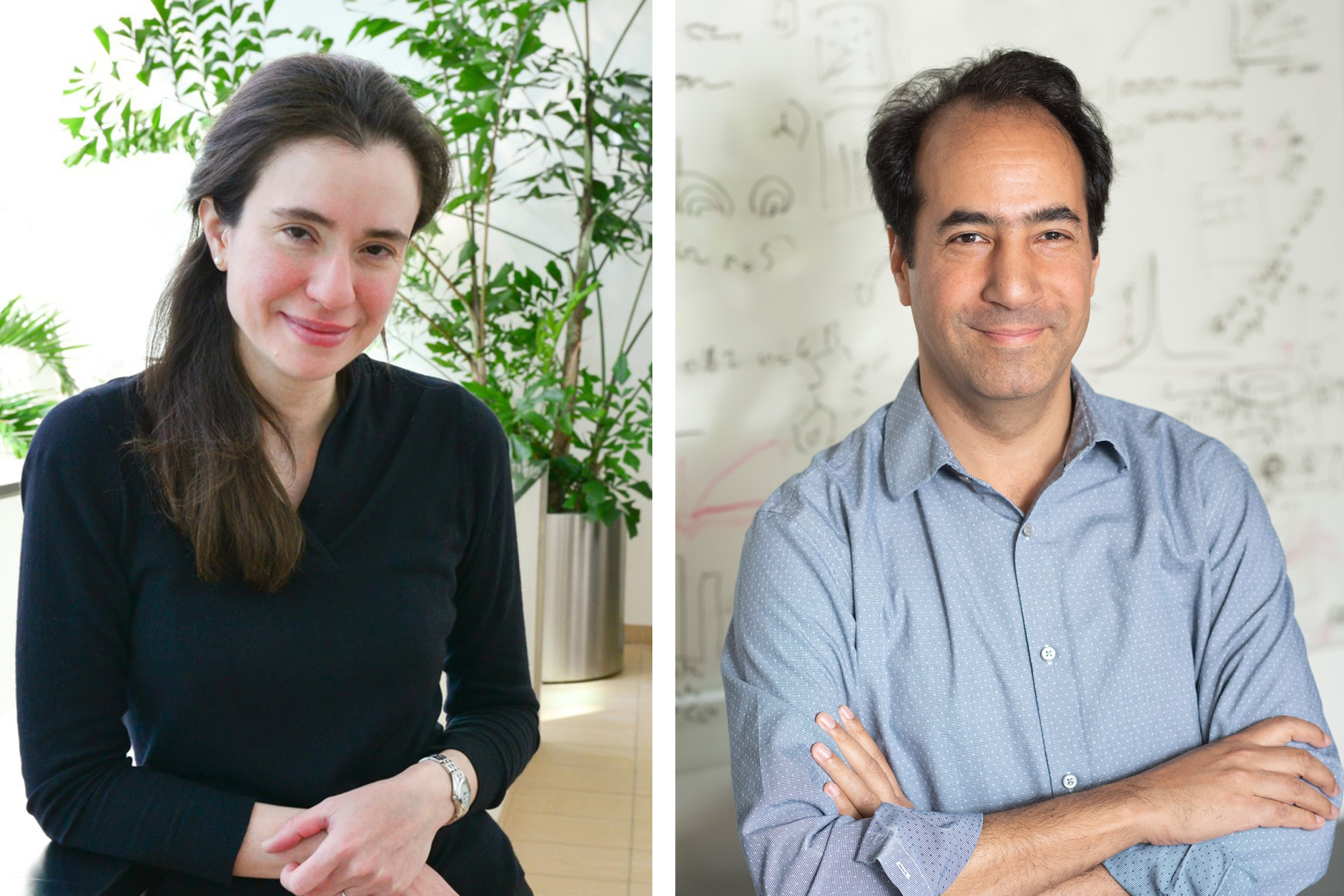 Scientists seek knowledge of Parkinson's, addiction, tracing gene expression in the brain |  MIT News
