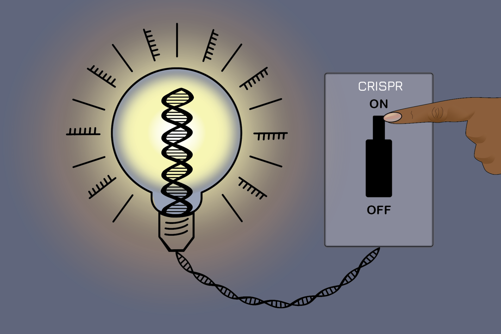 An on-off switch for gene editing