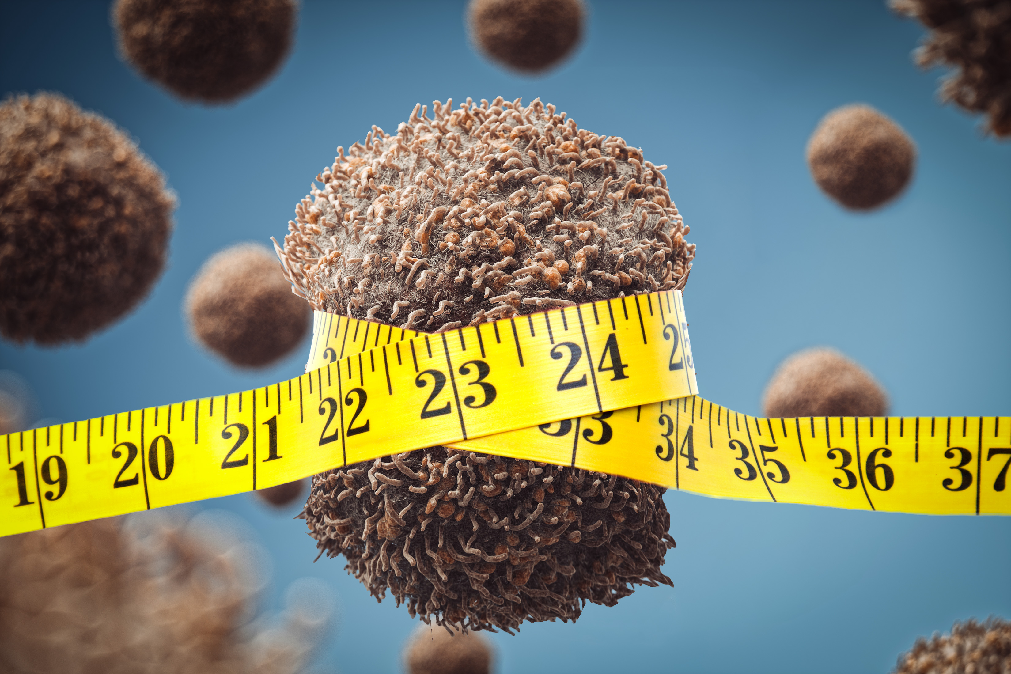 How diet affects tumors