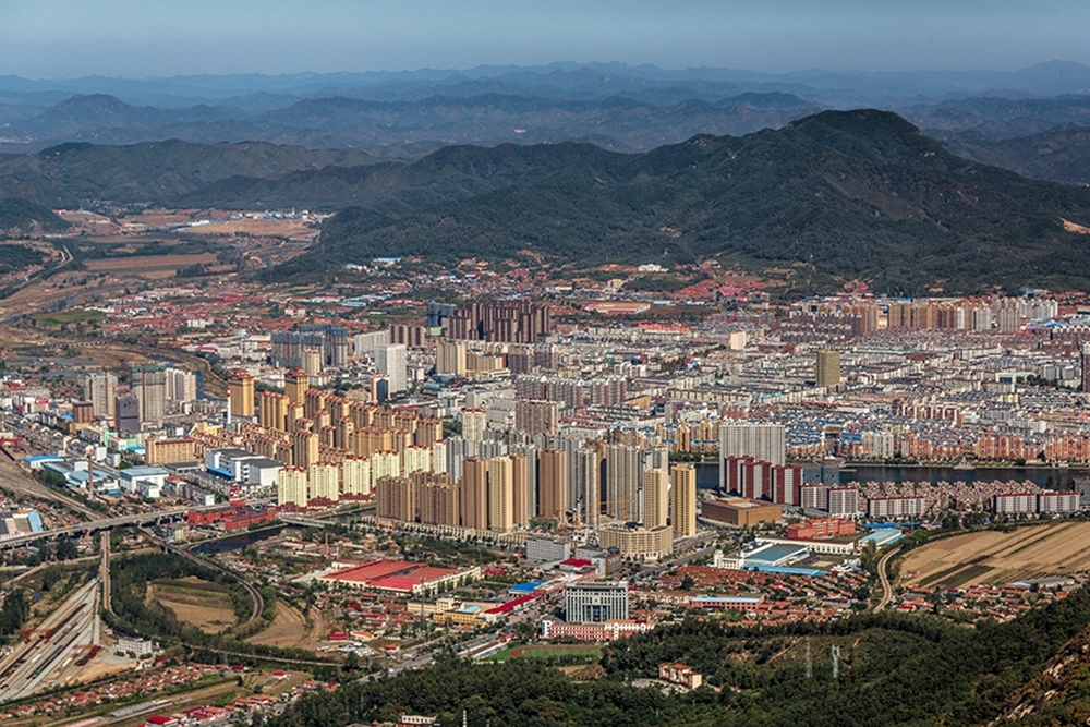 Transportation policymaking in Chinese cities
