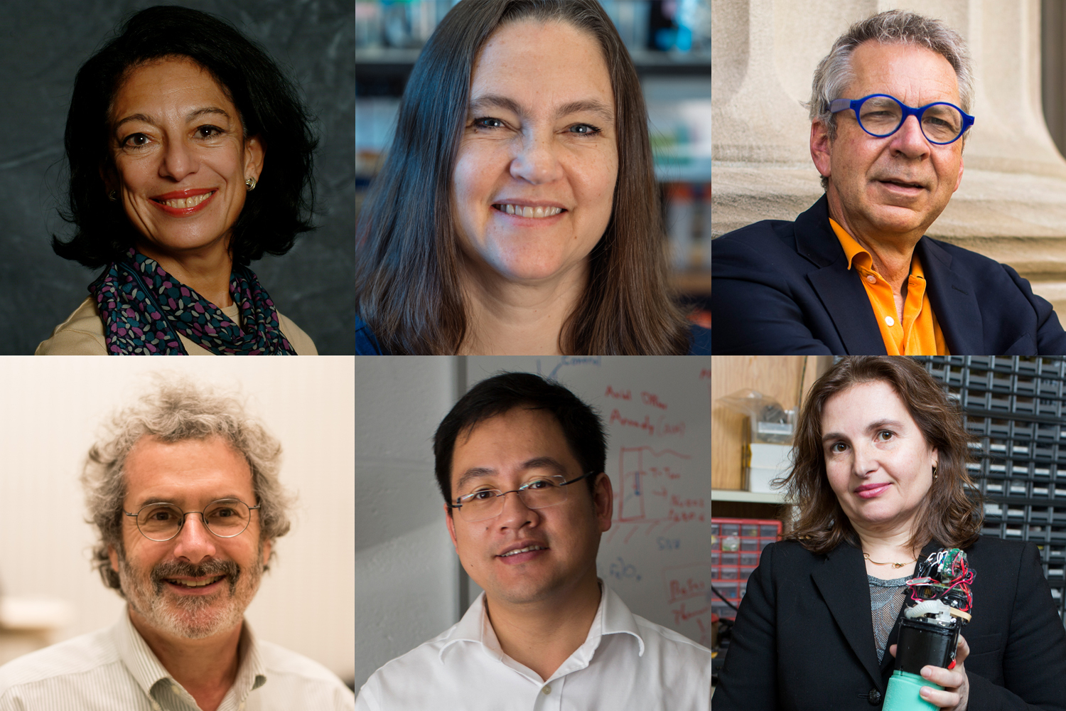 Six MIT faculty elected 2020 AAAS Fellows