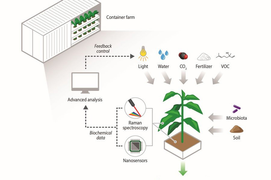 SMART develops analytical tools to enable next-generation agriculture