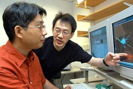 Neuroscience professor Morgan Sheng points to image of glutamate receptors as he and MIT postdoctoral fellow Sang Hyoung Lee discuss their work on how brain cells build and eliminate synapses.