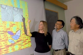 "MIT post-doc Jessica R. Newton points at a respresentation of a section of a mouse's brain that had been ""rewired"" to receive visual cues in the hearing region of its brain. Looking on are neuroscience professor Mriganka Sur, center, head of the Department of Brain and Cognititve Sciences, and Susumu Tonegawa, director of the Picower Center for Learning and Memory at MIT."
