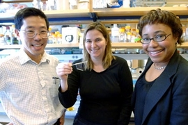 From left, Professors Yet-Ming Chiang, Angela Belcher and Paula Hammond display a virus-loaded film that can serve as the anode of a battery.