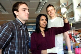 From left, Todd Harris, graduate student in the MIT-Harvard Division of Health Sciences & Technology (HST), Sangeeta Bhatia, professor in HST, and Geoffrey von Maltzahn, graduate student in HST, view two solutions of enzyme-activated nanoparticles. The enzymes cause the nanoparticles to self-assemble into large aggregates that fall out of solution.
