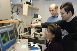 Postdoctoral associate Dong Xu points to an image that shows neuroblastoma cells producing nitric oxide. Xu, graduate student Mi Hee Lim, seated, and Professor Stephen J. Lippard have developed a new nitric oxide sensor.