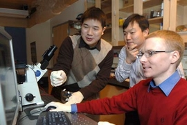 Graduate student Jianping Fu (left), Professor Jongyoon Han and postdoc Reto Schoch have created a microchip system that allows speedy separation and sorting of biomolecules.