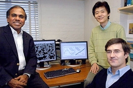 MIT researchers have developed a dynamic new model that can analyze the mechanics of red blood cell deformation at the molecular level. From left to right, the team includes Subra Suresh, professor of materials science and engineering, research scientist Ming Dao and postdoctoral associate George Lykotrafitis.