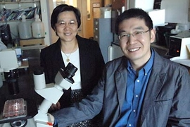 Dr. Jane-Jane Chen and post-doc Sijin Liu of the Harvard-MIT Division of Health Sciences and Technology. Their research team has identified a protein that is key in regulating iron recycling in blood, and could lead to therapeutic drugs for certain blood diseases.
