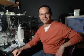 Biology professor Frank Gertler sits by a microscope in his lab. Gertler leads a team that's uncovered new insights on early development of the nervous system.