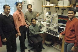 Shown, from left, are MIT postdoc Karthik Viswanathan; research scientist Rahul Raman; Ram Sasisekharan, MIT Underwood Prescott Professor of Biological Engineering and Health Sciences and Technology; postdoc Aravind Srinivasan and, seated, graduate student Aarthi Chandrasekaran. The researchers have discovered a new way to monitor whether avian flu strains are evolving into a form that could infec...