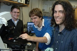 From left, graduate student Jerome Mettetal, Professor Alexander van Oudenaarden and Harvard graduate student Dale Muzzey report insights on how cells respond to external stimuli.
