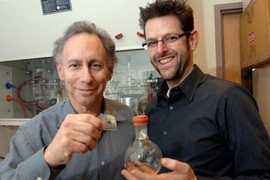 MIT Institute Professor Robert Langer and faculty member Jeffrey Karp, both affiliated with the Harvard-MIT Division of Health Sciences and Technology, display an adhesive they developed that was inspired by the gecko and may have medical and surgical applications.