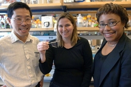 From left, MIT professors Yet-Ming Chiang, Angela Belcher and Paula Hammond. The three have authored a paper detailing their virus-based method of creating and installing microbatteries by stamping them onto a variety of surfaces.