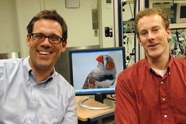 By studying songbirds, McGovern's Professor Michale Fee, left, and post-doc Michael Long move closer to understanding how timing is represented within the brain.
