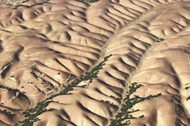 Perspective view of Gabilan Mesa, California, showing evenly spaced ridges and valleys. The scene, which is approximately 2 km wide, combines aerial photographs from the National Agriculture Imagery Program with laser altimetry from the National Center for Airborne Laser Mapping (NCALM).