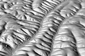 Perspective view of Gabilan Mesa, California, showing evenly spaced ridges and valleys. The scene, which is approximately 2 km wide, is a shaded relief map based on laser altimetry from the National Center for Airborne Laser Mapping (NCALM).