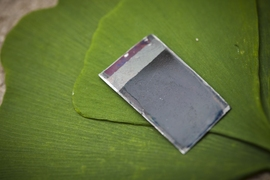 The 'artificial leaf,' a device that can harness sunlight to split water into hydrogen and oxygen without needing any external connections, is seen with some real leaves, which also convert the energy of sunlight directly into storable chemical form.