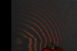 One of the things that distinguishes the researchers' new system from earlier high-speed imaging systems is that it can capture light 'scattering' below the surfaces of solid objects, such as the tomato depicted here.