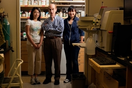 From left to right: Postdoc Ying Song, MIT chemistry professor Stephen J. Lippard and postdoc Ga Young Park.