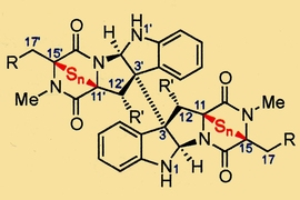 MIT chemists designed many variants of epipolythiodiketopiperazine (ETP) alkaloids and tested them for anticancer activity. A representative ETP structure is shown.