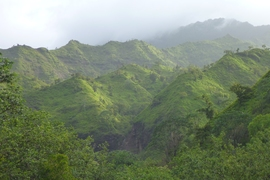 This image was taken in the Hanalei River basin on the north side of the Hawaiian island of Kauai.