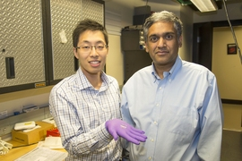 From left: Sungjae Ha and Anantha Chandrakasan demonstrate the chip in the Nanomechanics Laboratory.