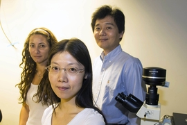 From left: Research scientist Monica Diez Silva, postdoc Sarah Du and principal research scientist Ming Dao, all of MIT's Department of Materials Science and Engineering.