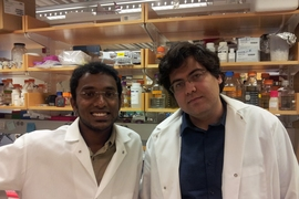 MIT graduate students Samuel Perli and Fahim Farzadfard participated in the research.