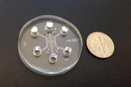 A microfluidic device with three channels and four gel region, used for studying cancer cell extravasation.