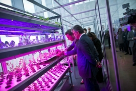 Turkish president Abdullah Gul (nearest to camera) examines an urban agriculture project in the MIT Media Lab.