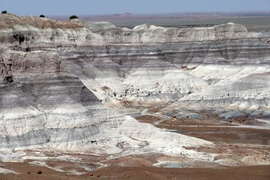The Blue Mesa locality of the Petrified Forest National Park in Arizona contains the Late Triassic continental sedimentary rocks of the Chinle Formation. Near Blue Mesa, the oldest documented dinosaur remains in the Chinle Formation have been found.