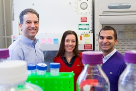Left to right: Ron Weiss, professor of biological engineering; Domitilla Del Vecchio, associate professor of mechanical engineering; and Deepak Mishra, MIT graduate student in biological engineering.