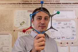 Bogdan Fedeles holds up a model of 5-chlorocytosine, a mutagenic DNA lesion occurring in inflamed tissues that may explain the link between chronic inflammation and cancer.