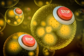 "To prevent genetically modified bacteria from escaping into the wider environment, researchers have developed safeguards in the form of two so-called ""kill switches,"" which they call ""Deadman"" and ""Passcode."" These kill switches can cause synthetic bacteria to die without the presence of certain chemicals."