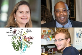 Clockwise from top left: Cathy Drennan, professor of chemistry and biology at MIT; Squire Booker, a professor of chemistry and of biochemistry and molecular biology at Penn State; Martin McLaughlin '15; and an image of LipA.