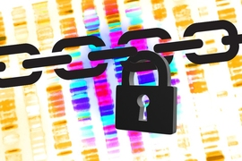 Researchers from MIT's Computer Science and Artificial Intelligence Laboratory and Indiana University at Bloomington describe a new system that permits database queries for genome-wide association studies but reduces the chances of privacy compromises to almost zero.