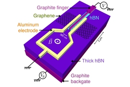 MIT physicists have found that a flake of graphene, when brought in close proximity with two superconducting materials, can inherit some of those materials' superconducting qualities. As graphene is sandwiched between superconductors, its electronic state changes dramatically, even at its center. Pictured is the experimental concept and device schematic.