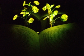 "Glowing nanobionic watercress illuminates the book ""Paradise Lost."""