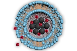 Diagram illustrates the structure of the tiny bubbles, called liposomes, used to deliver drugs. The blue spheres represent lipids, a kind of fat molecule, surrounding a central cavity containing magnetic nanoparticles (black) and the drug to be delivered (red). When the nanoparticles are heated, the drug can escape into the body.