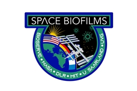 NASA's official mission patch for the upcoming space biofilms experiment, developed at MIT and the University of Colorado, which is scheduled to be sent to the International Space Station.