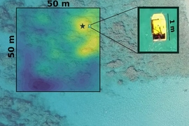 Even in unexplored waters, an MIT-developed robotic system can efficiently sniff out valuable, hard-to-find spots to collect samples from. When implemented in autonomous boats deployed off the coast of Barbados (pictured), the system quickly found the most exposed coral head —meaning it was located in the shallowest spot — which is useful for studying how sun exposure impacts coral organisms.