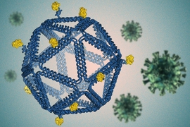 By folding DNA into a virus-like structure, MIT researchers have designed HIV-like particles that provoke a strong immune response from human immune cells grown in a lab dish.