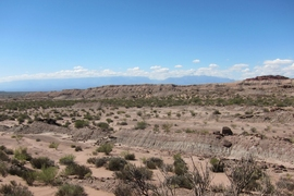 Field view of the fossil-rich Ischigualasto Formation (foreground) with the Sierra de Famatina mountains in the horizon