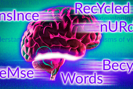 Illustration of brain with words