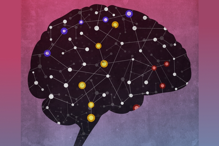 Network of diverse noncoding RNAs acts in the brain | MIT News |  Massachusetts Institute of Technology