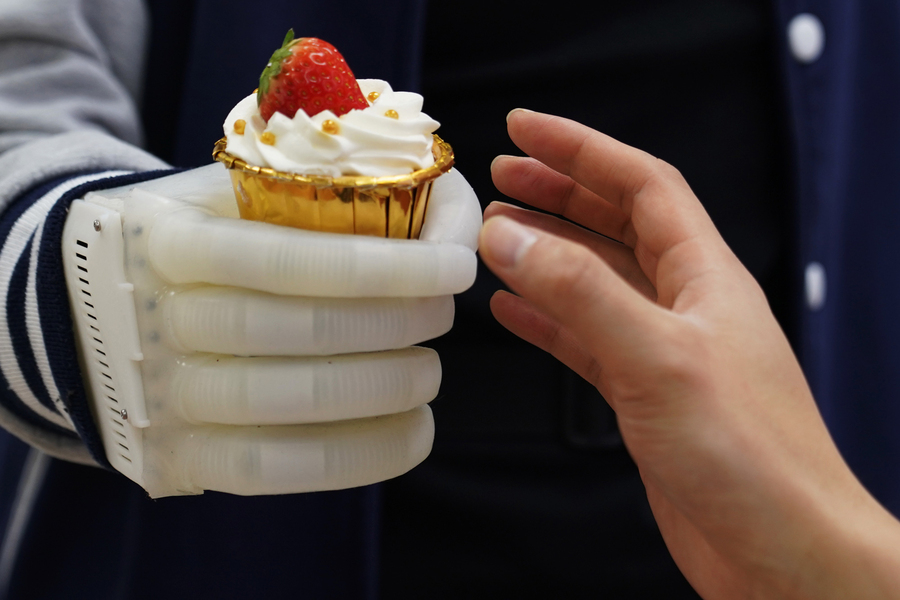 prosthetic hand muffin