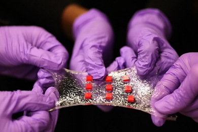 A new stretchy hydrogel can be embedded with various electronics. Here, a sheet of hydrogel is bonded to a matrix of polymer islands (red) that can encapsulate electronic components such as semiconductor chips, LED lights, and temperature sensors.